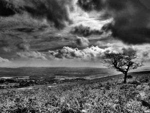 Black and white View from a Hill